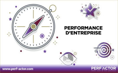 Performance d'entreprise, pourquoi doit-on la piloter ?