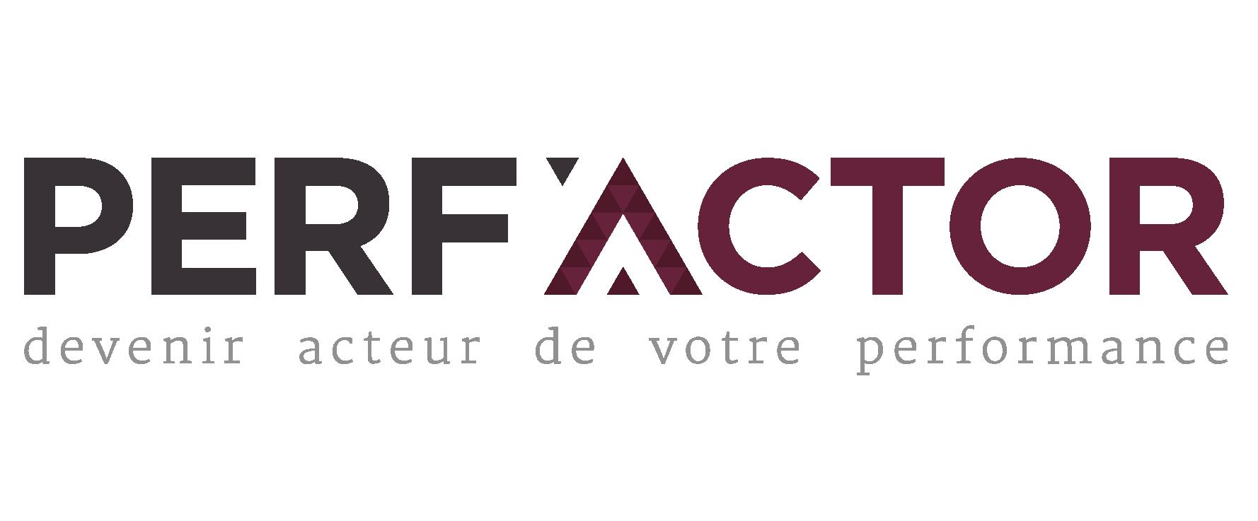 PERF'ACTOR | Performance, SI, Digital et Industrie 4.0 : Transformez votre business